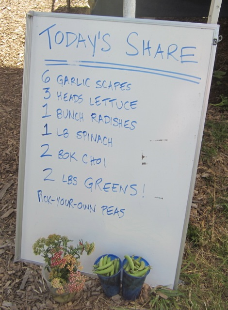 CSA Farm List of food on a whiteboard