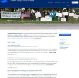 website screenshot - gvcp.org